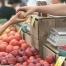 Για νέους παραγωγούς πωλητές που επιθυμούν να λάβουν άδεια υπαιθρίου εμπορίου παραγωγού